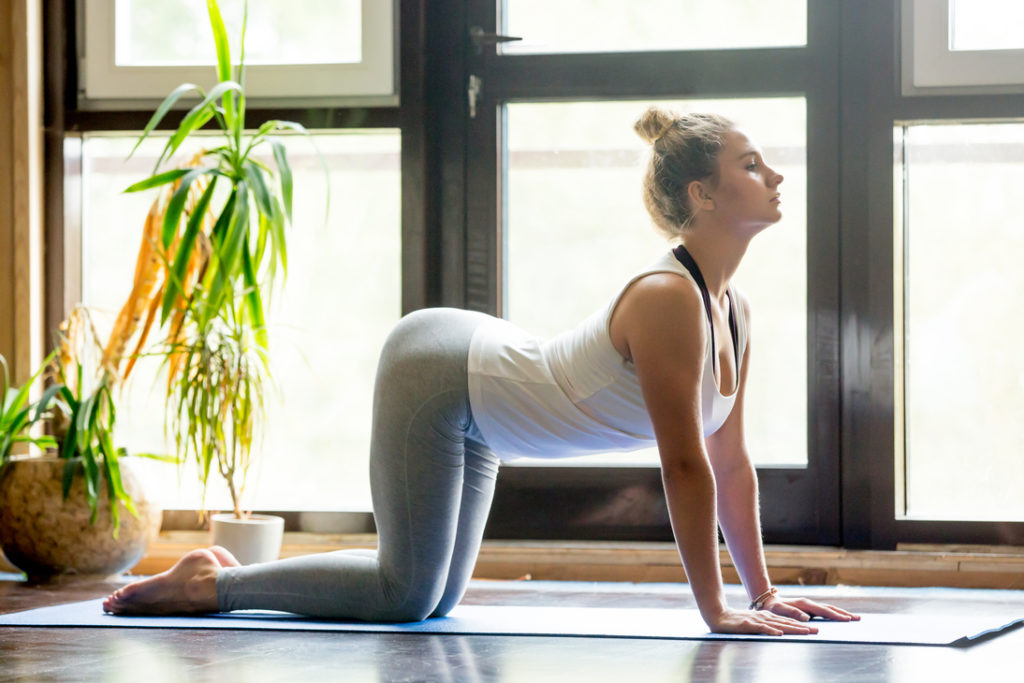 woman doing yoga at home in the morning cow pose (bitilasana)