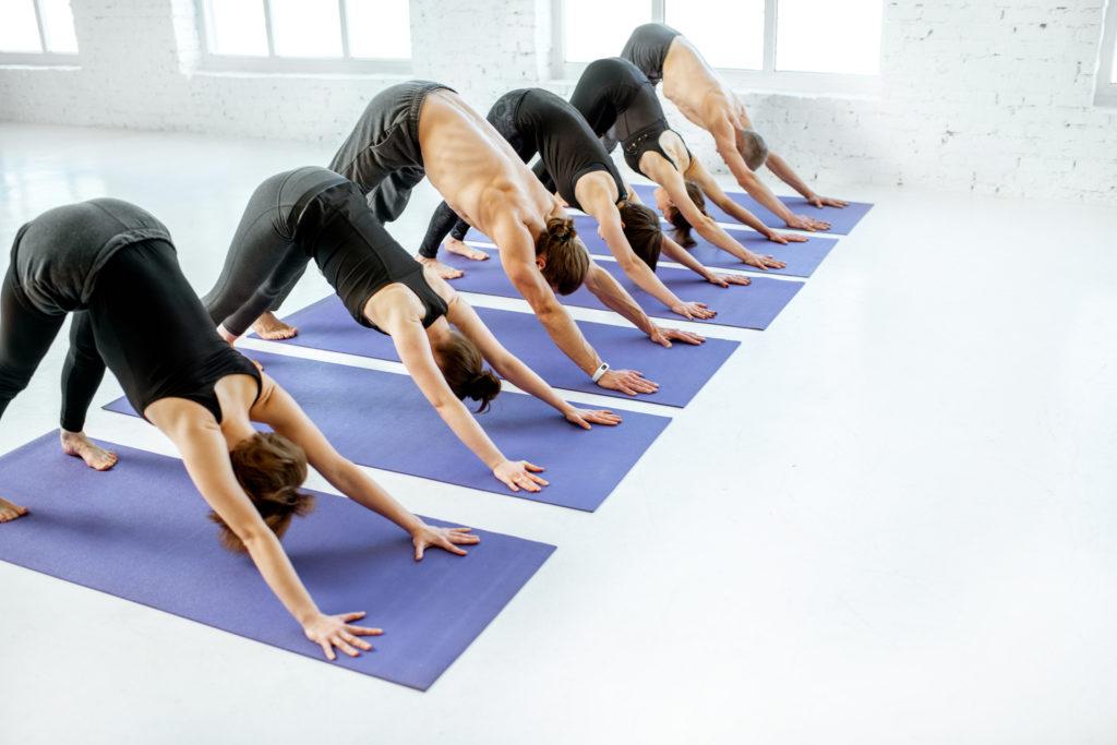 people-practising-hatha-yoga-most-popular-regular-yoga-class